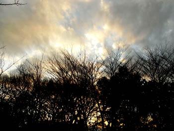 09_0108_sunset.jpg