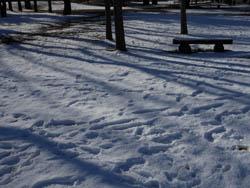 12_0126_snow01.jpg
