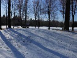 12_0126_snow02.jpg