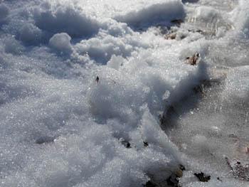 12_0126_snow03.jpg