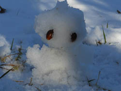 12_0130_snowman.jpg