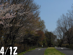 12_0417_park.jpg