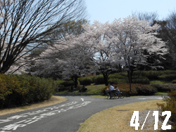 12_0418_park.jpg