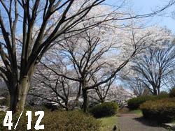 12_0420_park.jpg