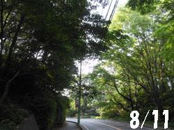 13_0822_sakamiti1.jpg