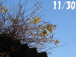 13_1214_nouzen_k.jpg