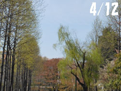 14_0503_park1.jpg