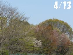 14_0510_yama_z.jpg