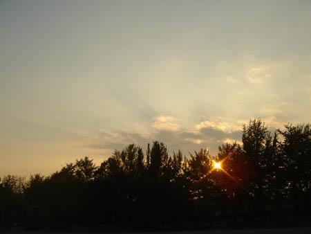 d_top_051105_sunset.jpg